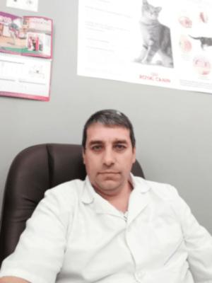 Ветеринарный врач-ортопед в Воскресенске - Попа Валерий Сергеевич